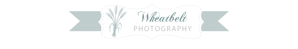 Wheatbelt Photography
