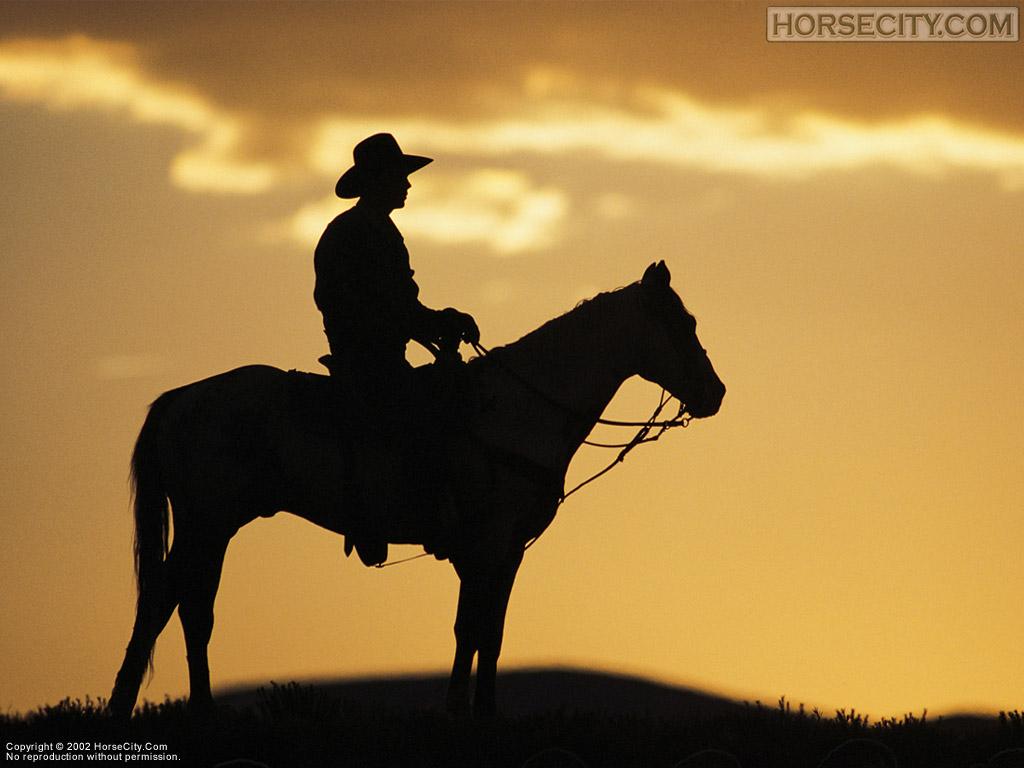 http://2.bp.blogspot.com/-W1UGKs3M0H4/UX3ksRmJW6I/AAAAAAAAGI0/kAm7uO-NSeA/s1600/cowboy_1024.jpg