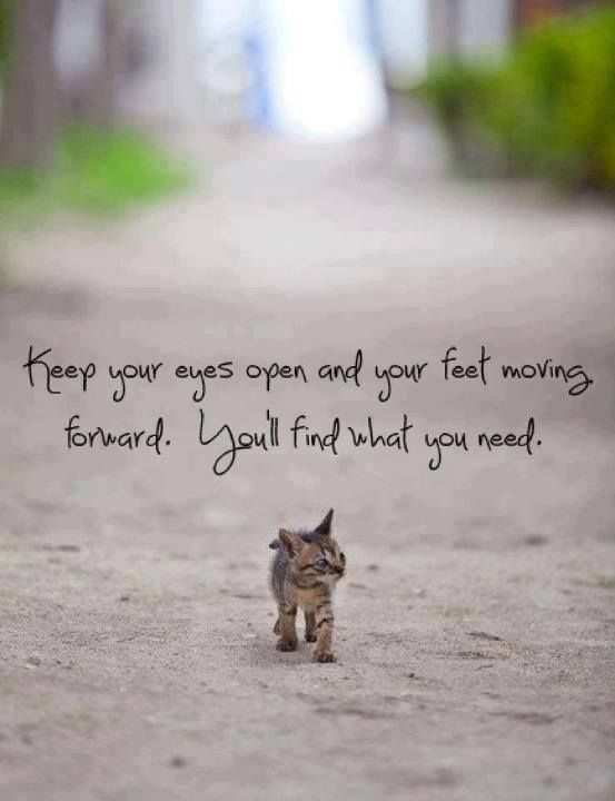 Quotes About Moving Forward Best Quotes About Moving Forward 48