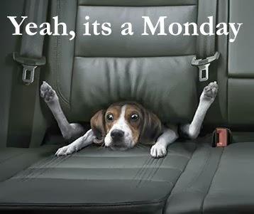 Happy Monday, part 3