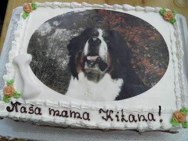 Torta mame Kitane in legla 2008