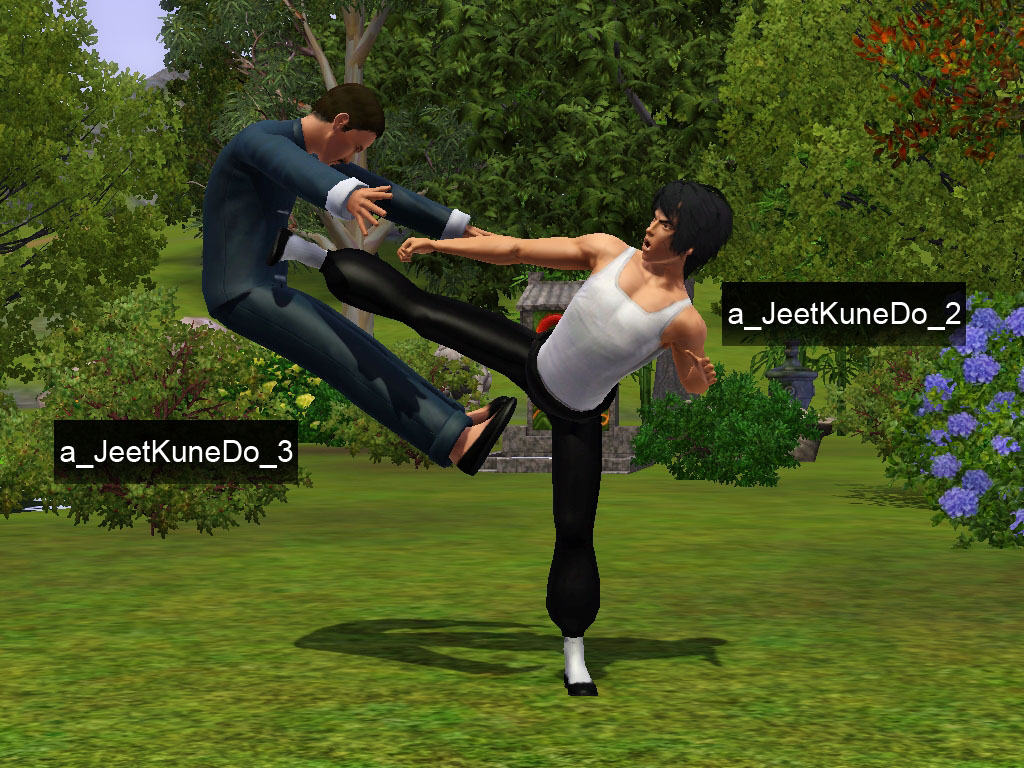 My Sims 3 Blog Bruce Lee Sim Jeet Kune Do Poses By Sil Sharkie