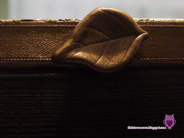 liść z modeliny