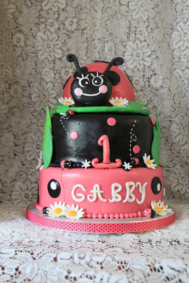 Dhanyas Delights Ladybug First Birthday Cake