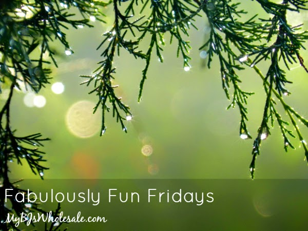 Fabulously Fun Fridays (December 12th Edition)