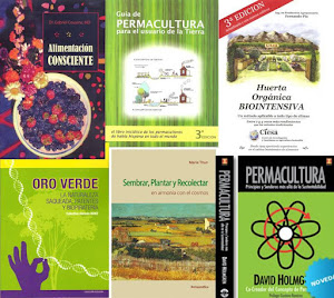 Libros recomendados