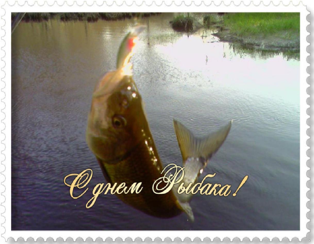 Прикольные поздравления на день рождения мужчине рыбаку прикольные