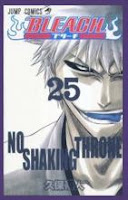 Bleach tomo 25