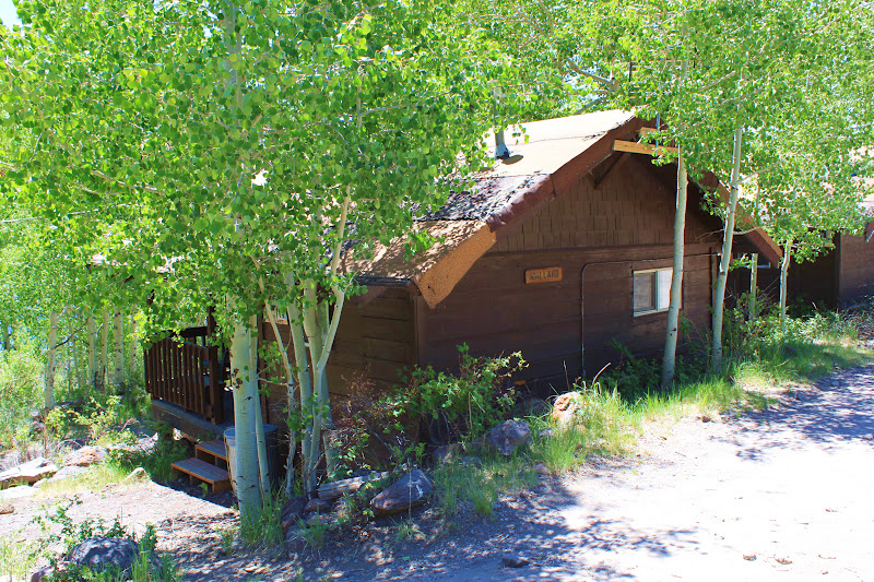Rental cabins at fish lake utah mallard 3 person for Fish lake cabin