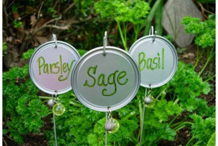Carteles para plantas en Recicla Inventa