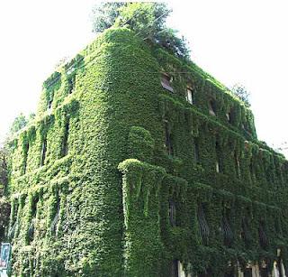 Decor e blablabla passeggiare a milano ultima parte for Villa mozart milano