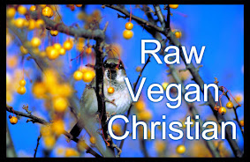 Raw Vegan Christians??