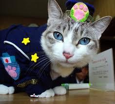 Officer Iemon