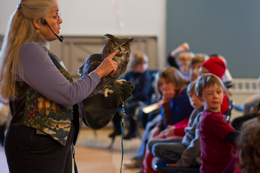 I love that the owl and the little boy are blinking in this photo!! 