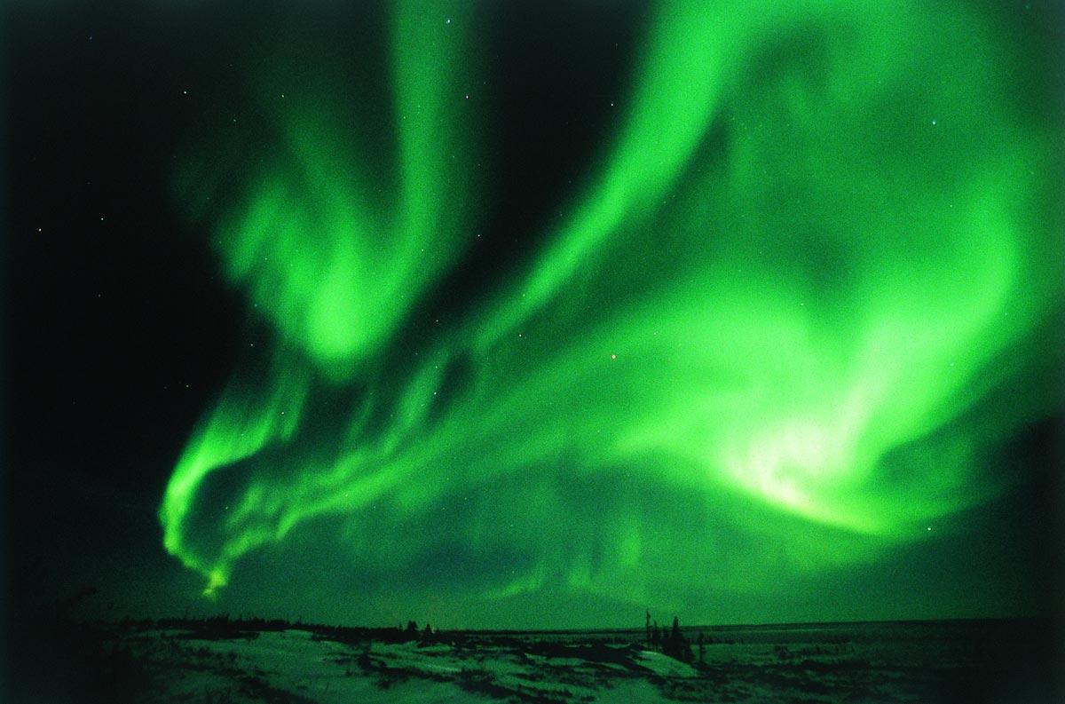 the northern lights  b...