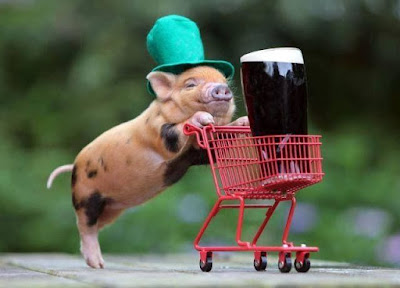 Pig goes shopping for beer trolley