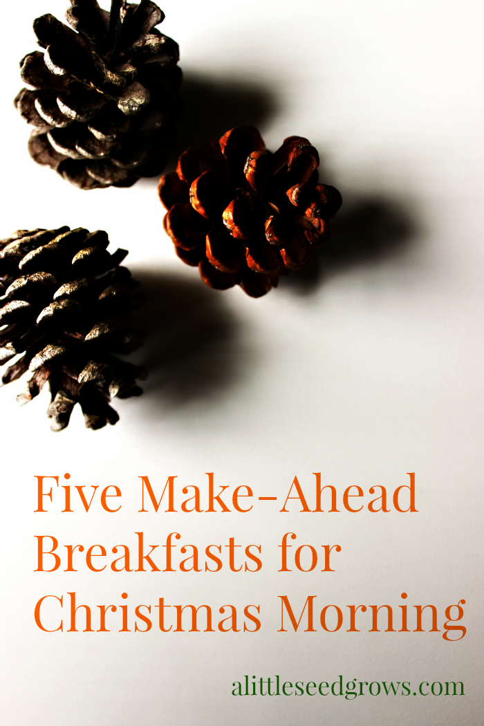 Five Make Ahead Breakfasts for Christmas Morning [Recipe Round-Up at A Little Seed Grows - Blog]