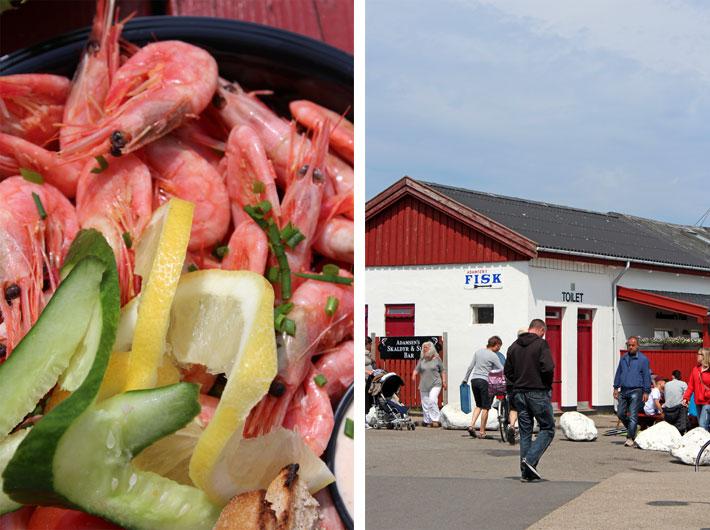 Amalie loves Denmark, Hafen von Gilleleje, Dänemark, Frische Krabben