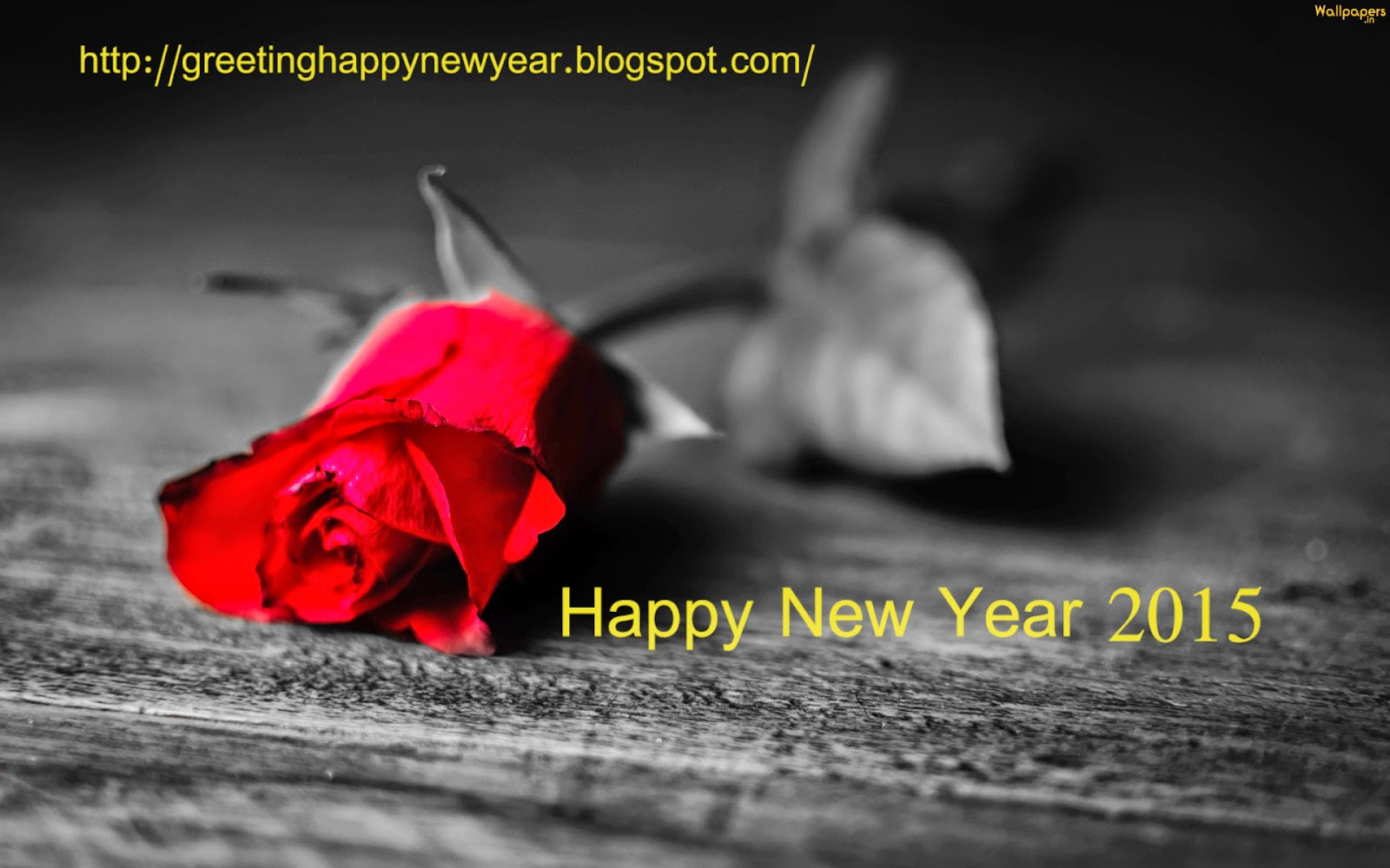 HAPPY NEW YEAR 2015 ROSE HD WALLPAPER - NEW LATEST WALLPAPER