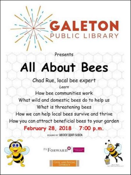 2-28 All About Bees, Galeton Library