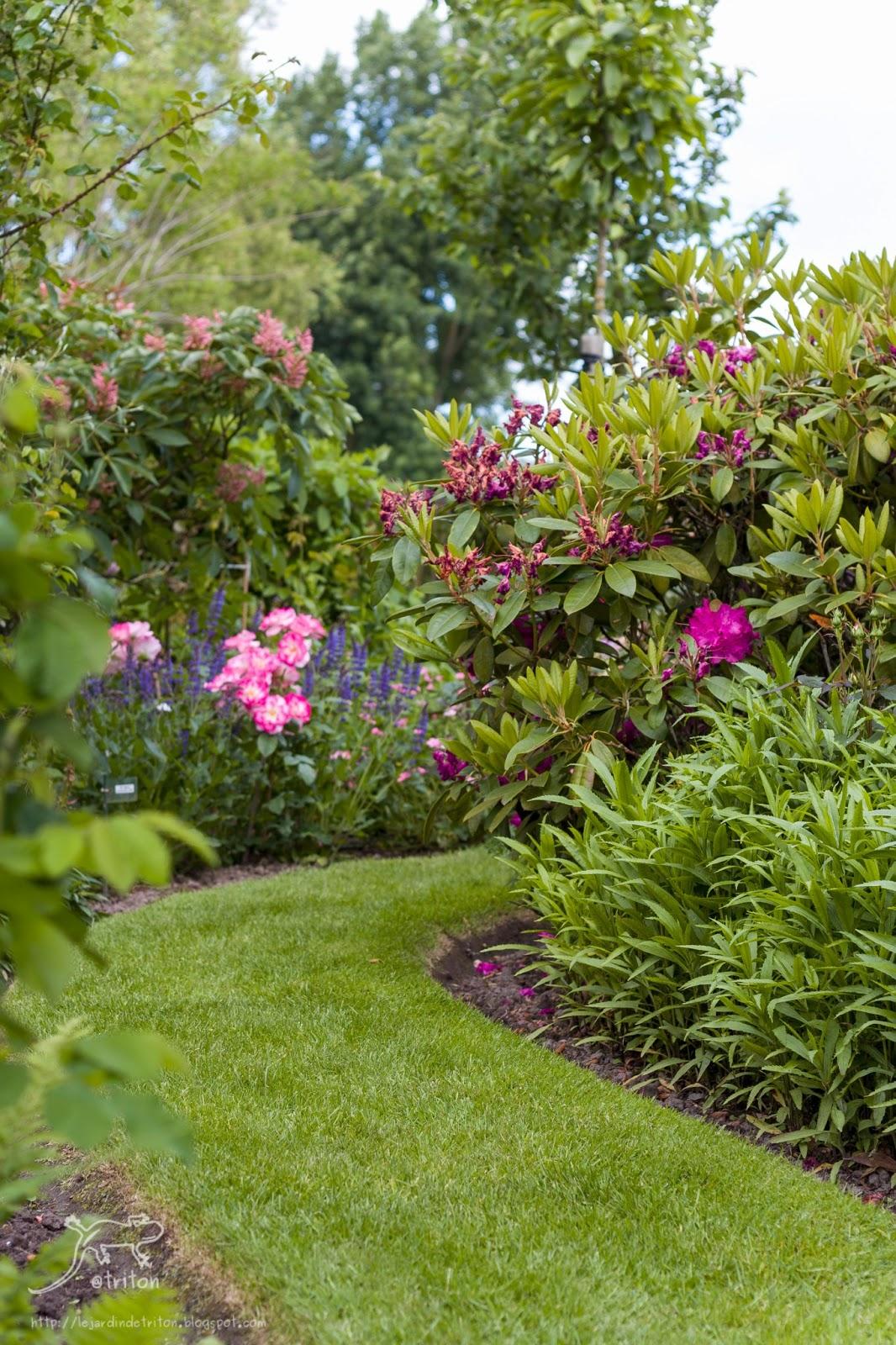 Le jardin de triton visite du jardin les aiguillons en for Jardin belgique