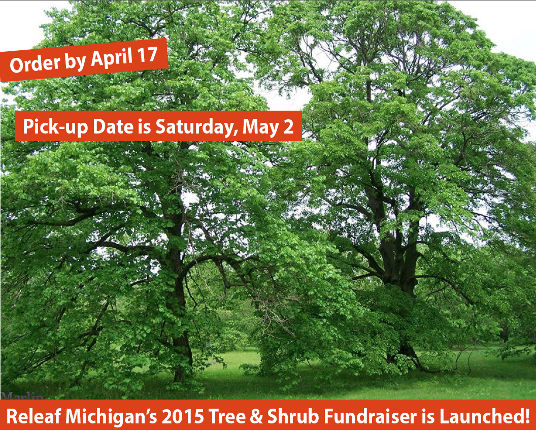 http://releafmichigan.blogspot.com/p/tree-and-shrub-fundraiser-sale.html