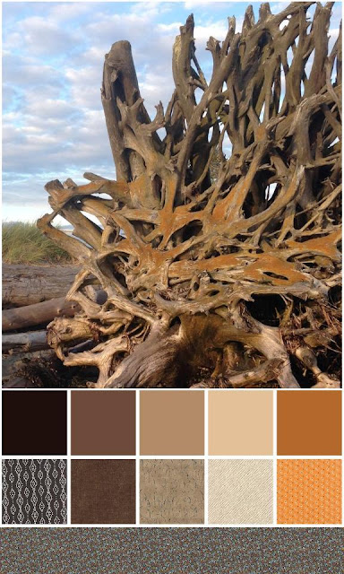 color play friday jetty island drift wood