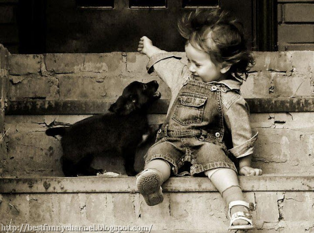 Funny kid and dog.