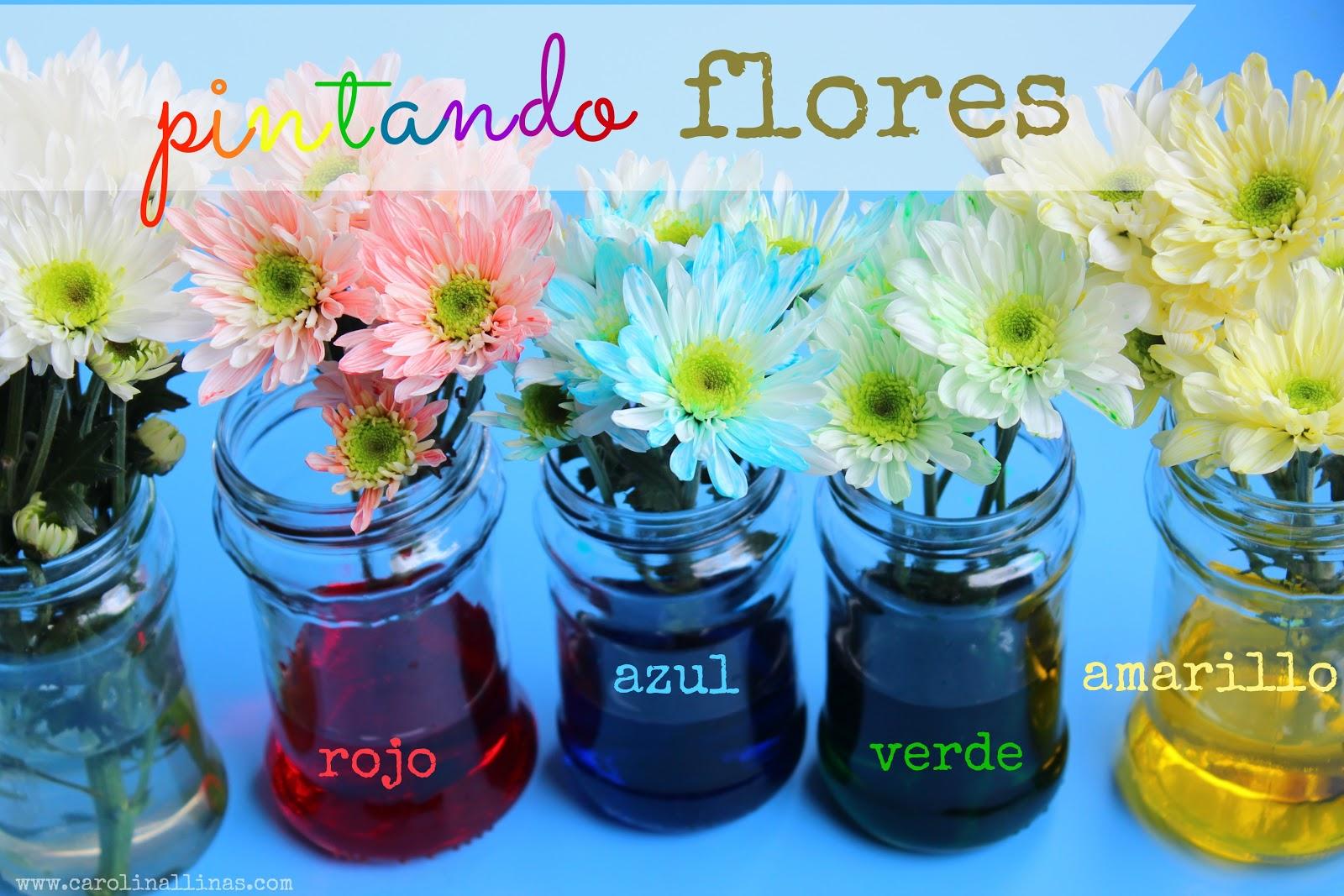 Dibujos de flores para pintar en tela Imagui - Imagenes De Flores Para Pintar Sobre Tela