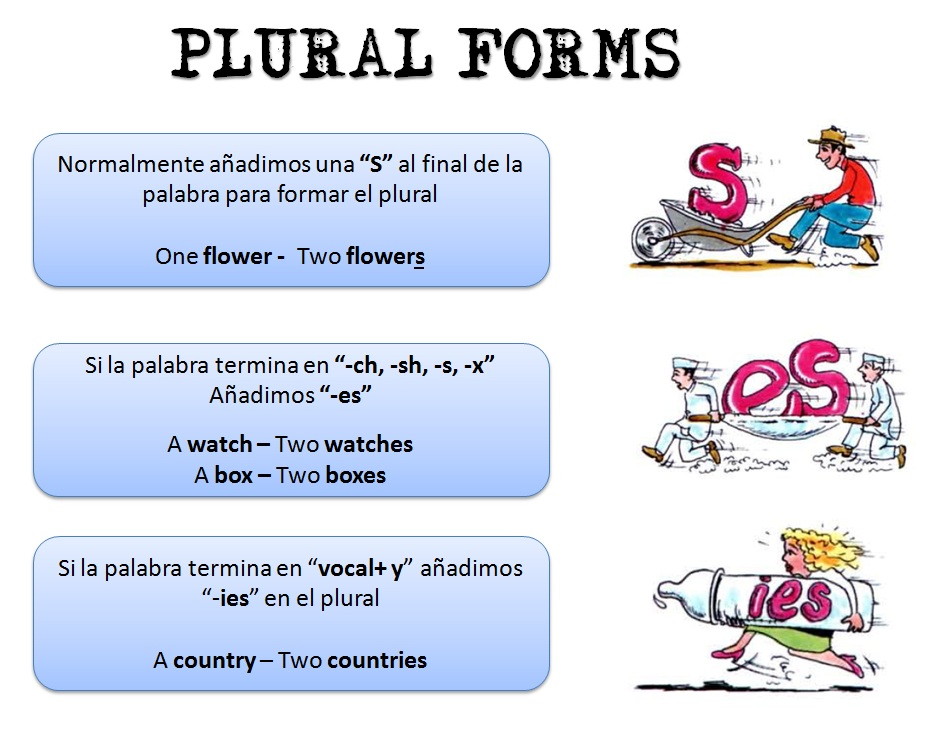 e p ingl 201 s secundaria reglas para hacer el plural