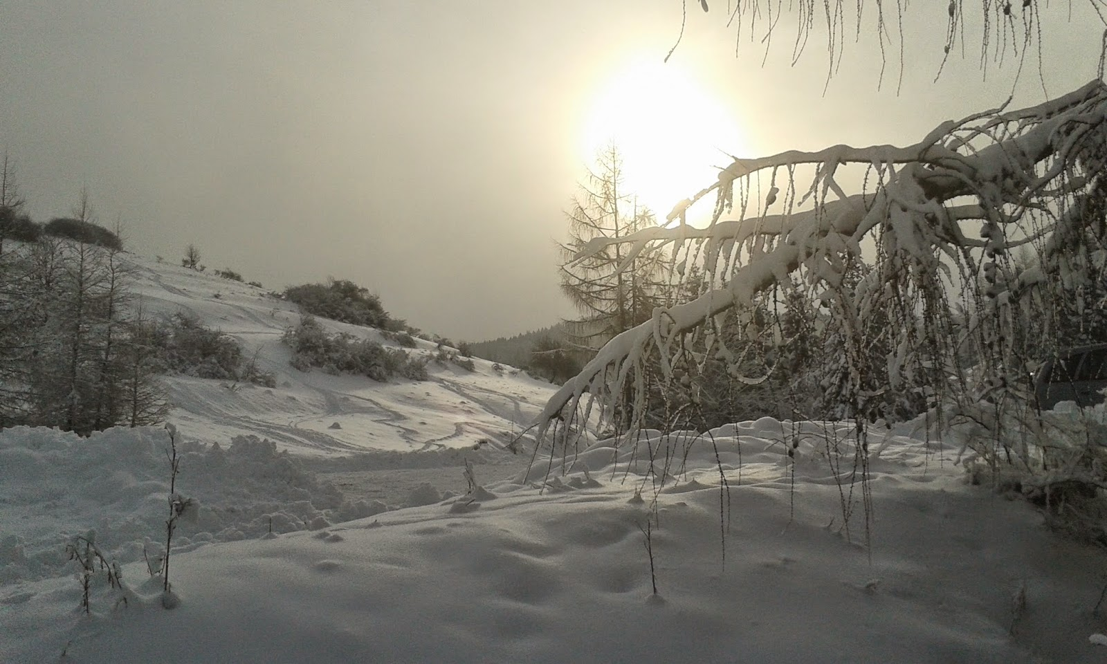 Jaworki zimą