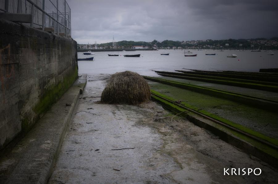 bala de ramas cerca del mar en hondarribia
