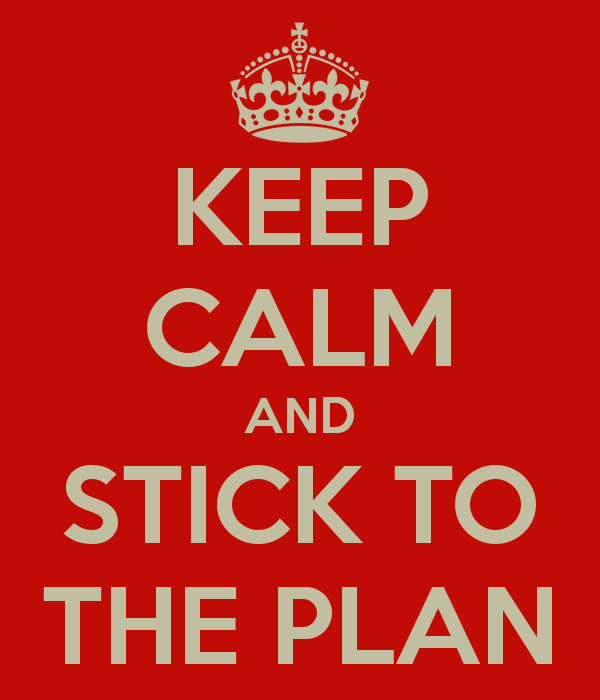 Image result for stick to plan