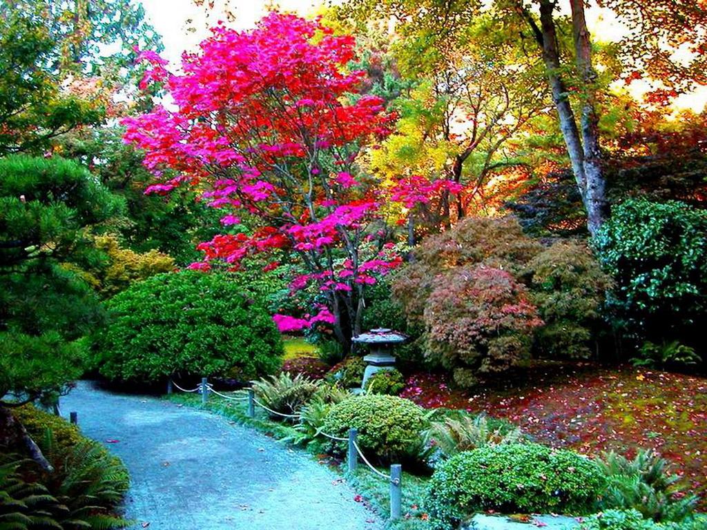 Paisajes de ensue o paisajes de colores for Jardines bellos fotos