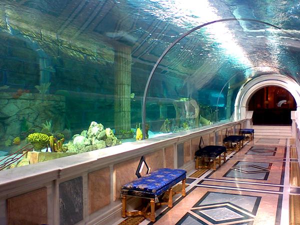 big aquarium - photo #23