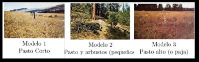 Modelos 1,2 y 3 según Rothemel.