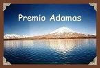 Day 335- Premio Adamas
