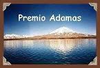 Day 335- Premio Adamas