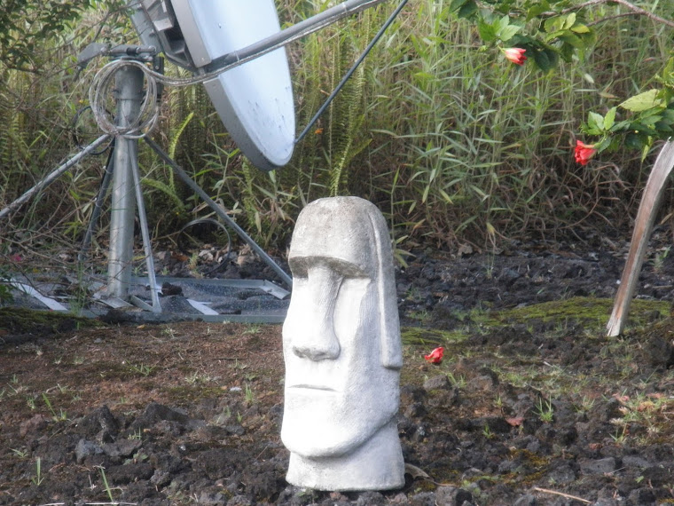 Ancient Mushroom Forehead to Modern Form of Communication?