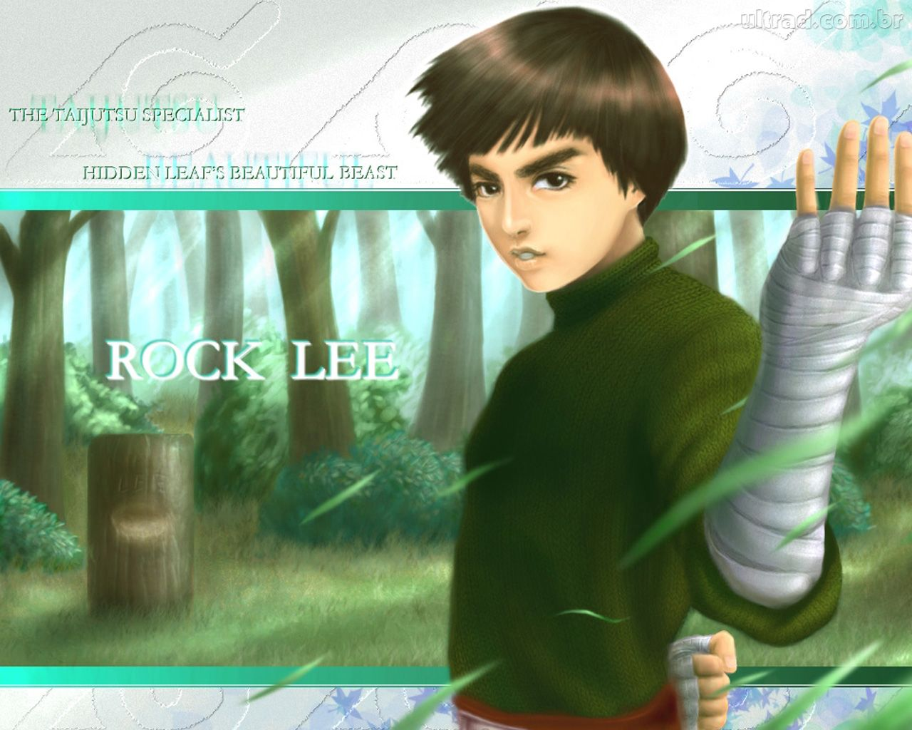 Displaying 16 gt images for rock lee and naruto
