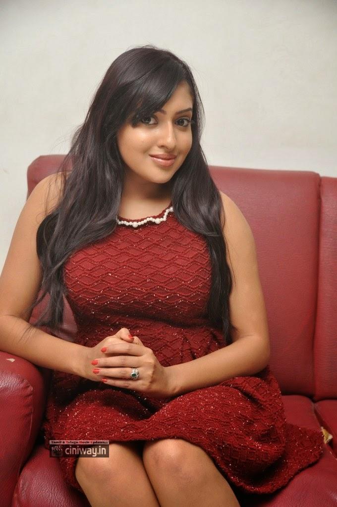 Anjana-Deshpande-Stills-at-Nenu-Naa-Friends-Pre-Release-Press-Meet