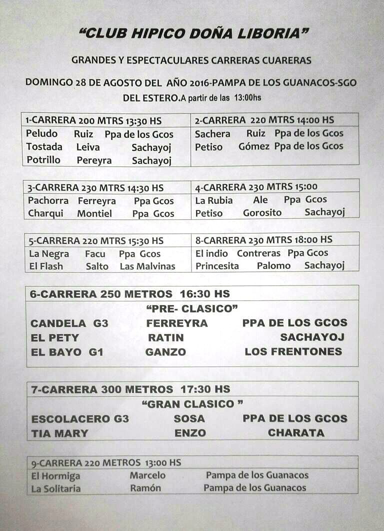 GUANACOS PROGRAMA 28-8
