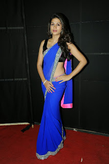 Actress Shraddha Das  Pictures in Saree at Rey A to Z Look Launch 0052.jpg