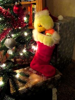 Tevia's duck stocking