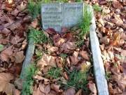 Able Seaman Reuben Ernest Hawkes Brockley Ladywell Cemetery