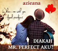 DIAKAH MR. PERFECT AKU?