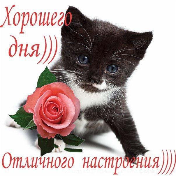http://2.bp.blogspot.com/-WAPzCT5LtdY/T5NDM5zo0UI/AAAAAAAADtk/lP17RGZVwzM/s1600/x_b5ea2923.jpg
