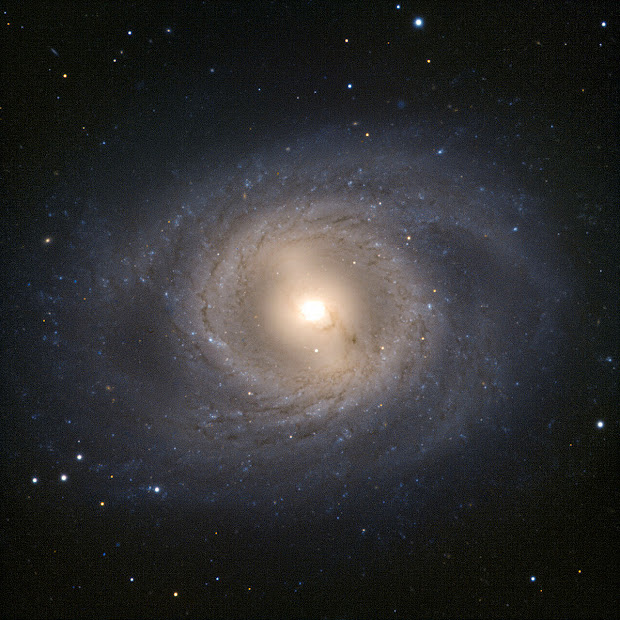 Barred Spiral Galaxy M95 as seen by the VLT