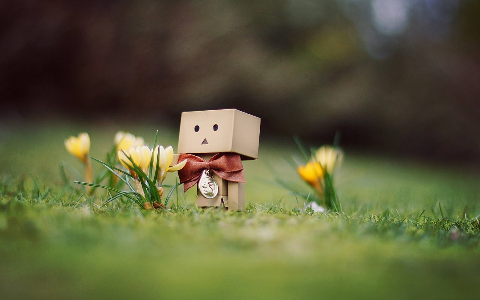 Cute Robot Love Wallpaper Cute Robot Wallpaper |...