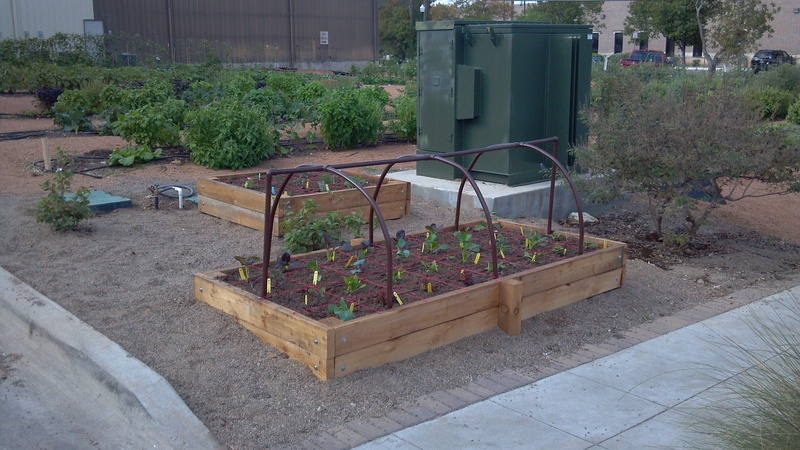 Raised beds and irrigation systems for the home garden for Home garden irrigation design